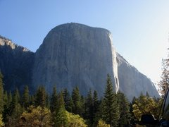 Rock Climbing Photo: Day 4 - El Capitan in the morning light.