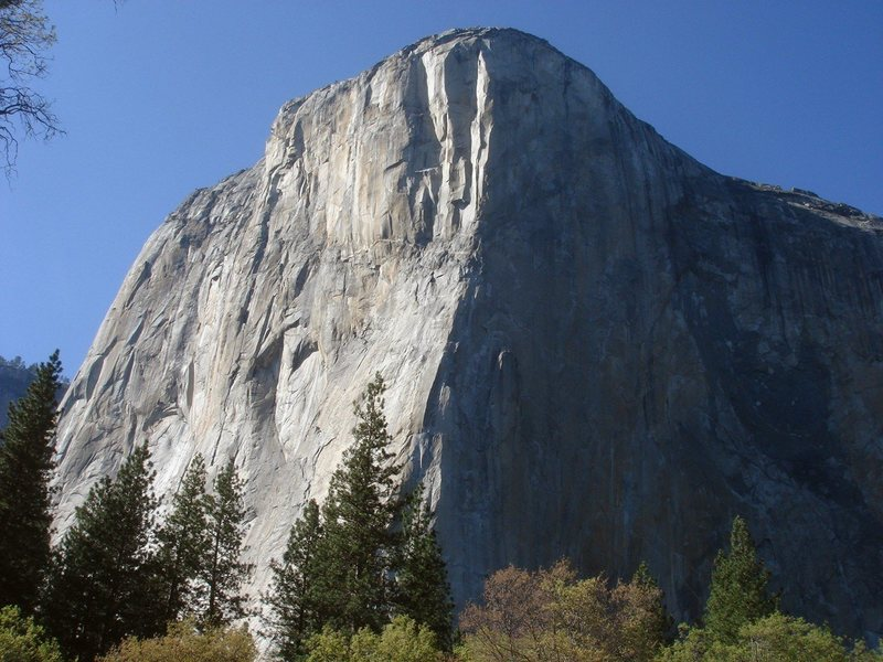 Day 4 - El Capitan from the meadow, Salathe Wall in the afternoon sun.