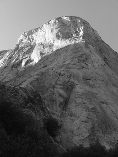 Day 4 - The famous Nose of El Cap.