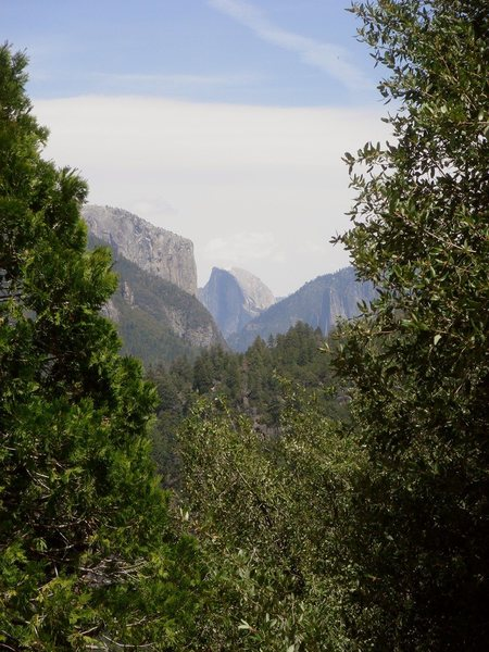 Day 5 - Morning, Yosemite Valley, El Capitan and Half Dome.