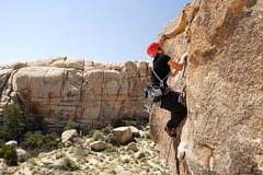 Rock Climbing Photo: Lisa Pritchett - Unnamed route, Joshua Tree Nation...