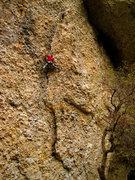 Rock Climbing Photo: cameron working the amazing corner on dry spunk/ti...