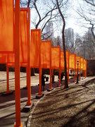 Rock Climbing Photo: Central Park...
