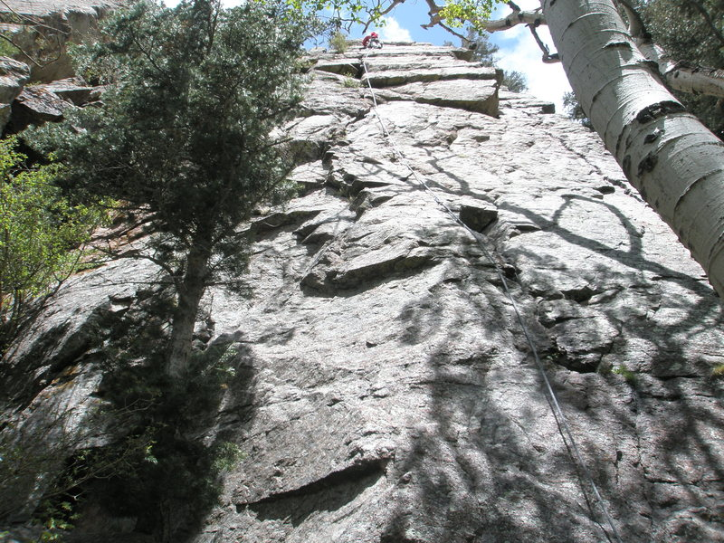 Climber Nearing the top of Beat Around the Bush.  The small roof and the bush for which (I presume) the route is named can be seen a short ways below the climber.