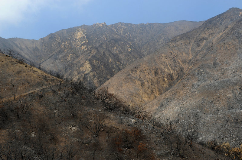 Upper Cold Springs Canyon, home of Cold Springs Dome.