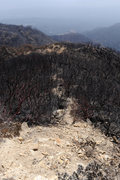 Rock Climbing Photo: Approach trail to Lower Gibraltar, which was among...
