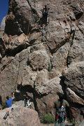 Rock Climbing Photo: Nate leading Golden Poodle