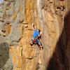 Josh Laitila leading Scorpion corner