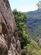 Rock Climbing Photo: Tristan Hechtel on Can Margues, Upper, a cliff wit...