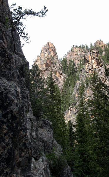 Rock Climbing Photo: Spring Creek Tower.