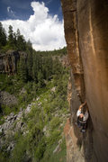 Rock Climbing Photo: The Forks Flyer 5.12 OW.  Photo by Bennett Barthel...