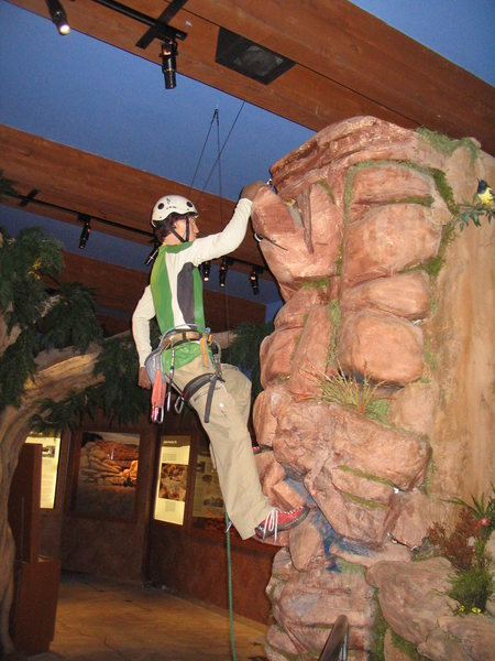 Rock Climbing Photo: Climbing in the visitor center , Red Rock, NV.