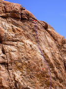 Rock Climbing Photo: Top of route showing bolt and anchors.