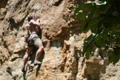 Rock Climbing Photo: Brian on Donkey Punch
