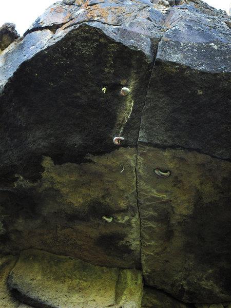 Rock Climbing Photo: WTF