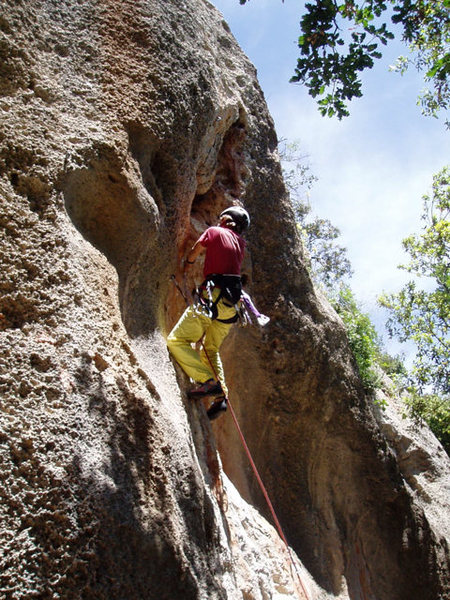 Rock Climbing Photo: Tristan, age 10, leading on the Parete Dimenticata
