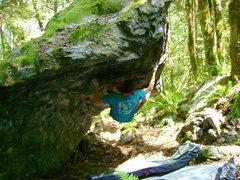 Rock Climbing Photo: Brock on Ingenious Machine