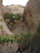 Rock Climbing Photo: Mini slot canyon to the east, past Behind the Scen...