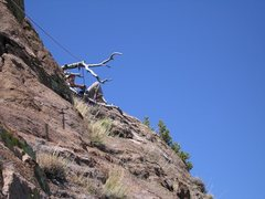 Dead Tree belay, top of 6th