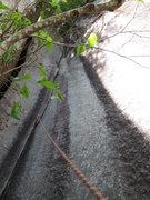 Rock Climbing Photo: Pitch 3 of Rattletale (10b).