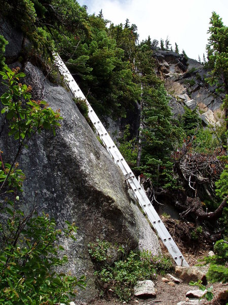 Rock Climbing Photo: The ladder, is part of the trail