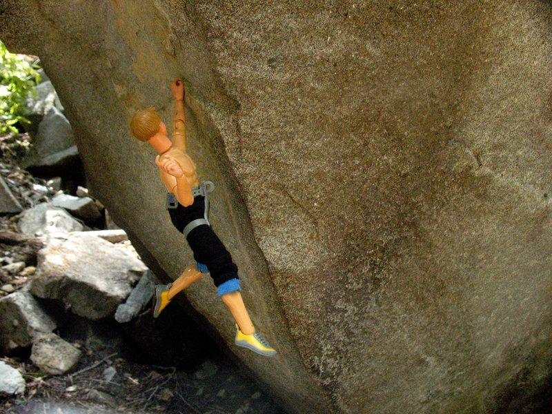 Sticking the crux of Of Mites and Men, 5.15.<br> Photo by Tobin Sanson