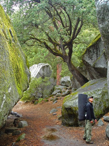 Roaming around the Camp 4 Boulders after a downpour