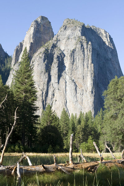 Rock Climbing Photo: In Yosemite there are paths to all the good photos...