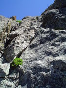 Rock Climbing Photo: Looking up P2 from where I belayed for P1, again, ...