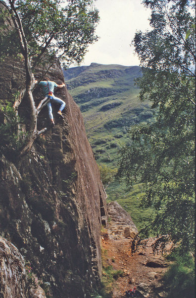 Rock Climbing Photo: Nearing the top of Nomad.