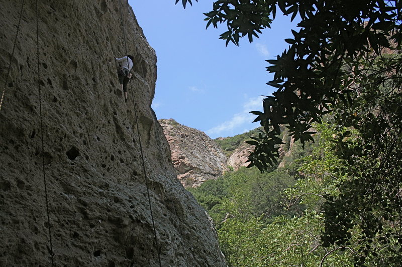 me almost topping out on Moonshiner (5.9)