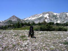 Rock Climbing Photo: my camping buddy, Mallory