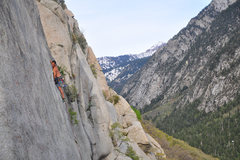 Rock Climbing Photo: Mexican crack with the bird in the background