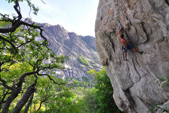 Rock Climbing Photo: makin my way through the steep part of the route