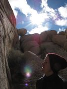 Rock Climbing Photo: Joshua Tree with Nic.