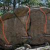 """""""Mineral Wall."""""""