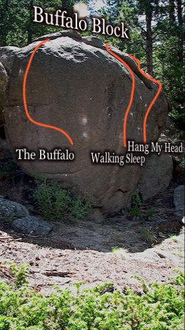"Photo beta for ""Walking Sleep."""