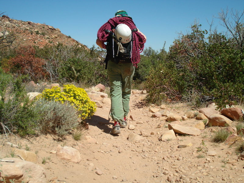 Rock Climbing Photo: Spring time in the desert