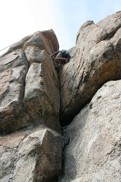 Albert on Green Eggs and Ham 5.7
