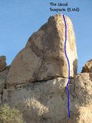 Rock Climbing Photo: The Usual Suspects (5.10d), Joshua Tree NP.
