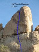 Rock Climbing Photo: No Perch is Necessary (5.10c), Joshua Tree NP.