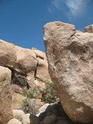 Rock Climbing Photo: Showstopper (V3), Joshua Tree NP.