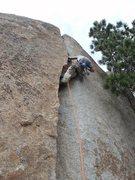 Rock Climbing Photo: Short but sweet.