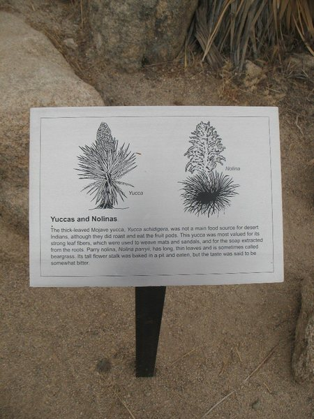 Rock Climbing Photo: The interpretive sign in front of Showstopper Rock...