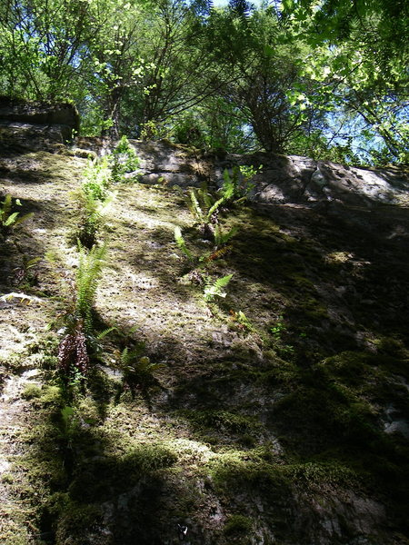 Rock Climbing Photo: This is what this fine route looked like before be...