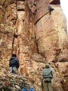Shelf Road, Cactus Cliff, Lats 11.d