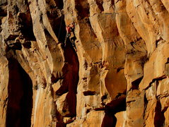 Rock Climbing Photo: Wade Forrest running a lap on the False Prophet.