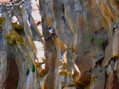 Rock Climbing Photo: Colin Cox sticking with it...