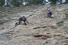 Rock Climbing Photo: Rob Chaney of Ventura belaying Tim Lister of Oxnar...