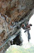 Rock Climbing Photo: King Cat, Cat Wall, Thailand 6c+
